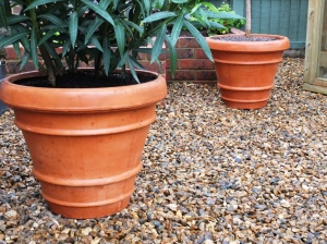 Terracotta pots supplied by DIY.com